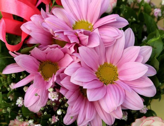 Ako recyklovať/triediť kvety