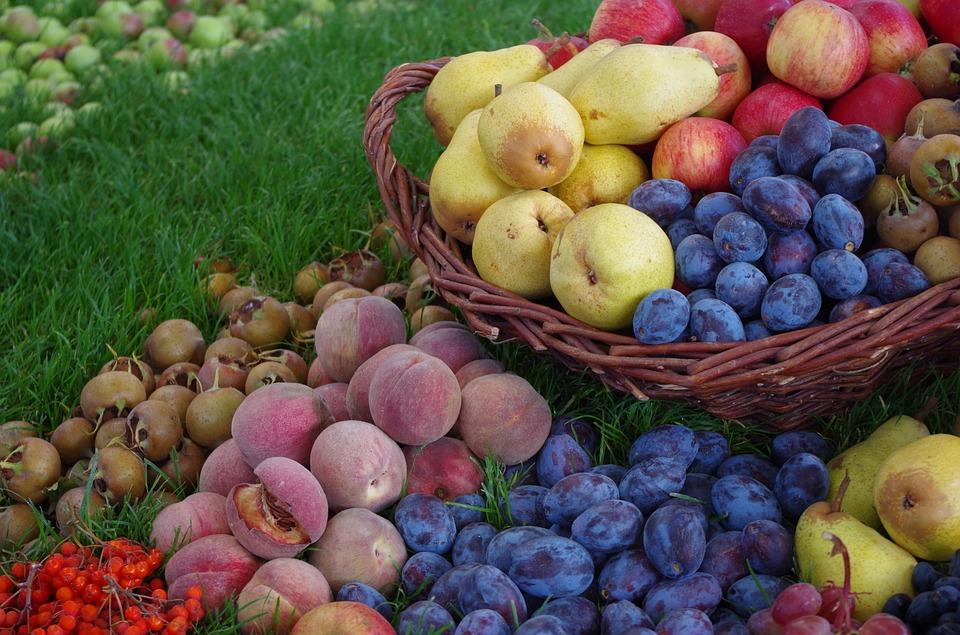 Ako recyklovať/triediť zhnité ovocie a zelenina