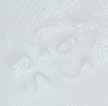 PS 6 označenie
